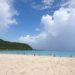 夏の旅行におすすめ、種子島の魅力について